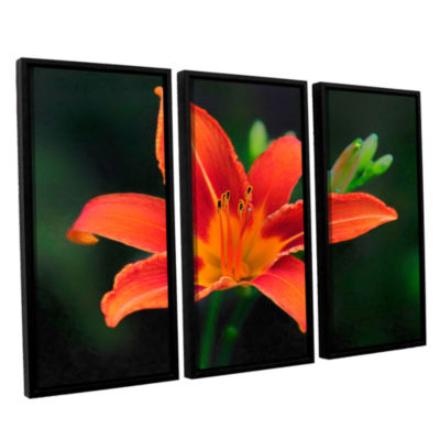 Brushstone Petals In Focus 3-pc. Floater Framed Canvas Wall Art