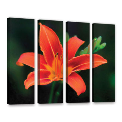 Brushstone Petals In Focus 4-pc. Gallery Wrapped Canvas Wall Art