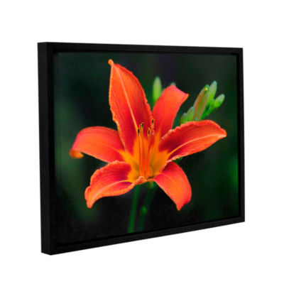 Brushstone Petals In Focus Gallery Wrapped Floater-Framed Canvas Wall Art