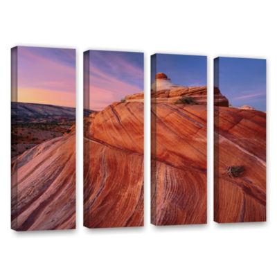 Brushstone Paria Wilderness 4-pc. Gallery WrappedCanvas Wall Art