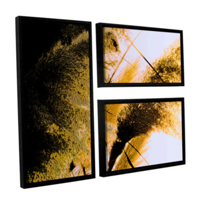 Brushstone Pampas In Relief 3-pc. Flag Floater Framed Canvas Wall Art
