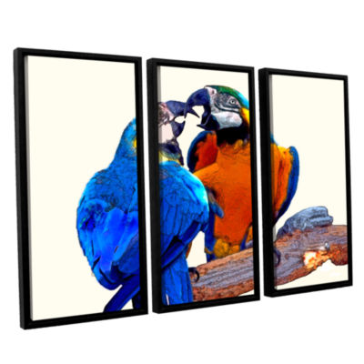 Brushstone Parrot Passion 2 3-pc. Floater Framed Canvas Wall Art