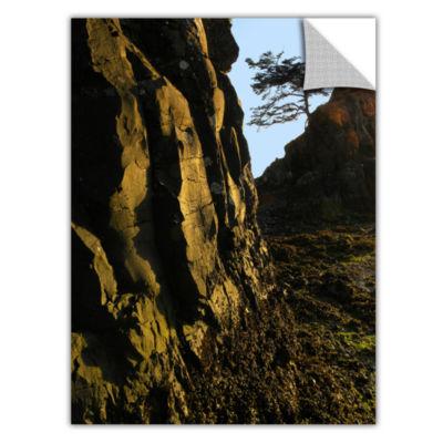 Brushstone Oregon Coast Sunset Removable Wall Decal