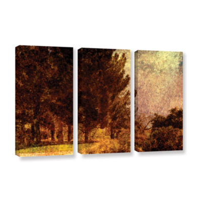 Brushstone Passing 3-pc. Gallery Wrapped Canvas Wall Art