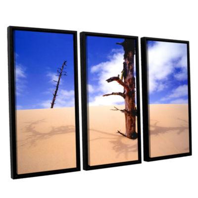 Brushstone Oregon Dunes Noon 3-pc. Floater FramedCanvas Wall Art