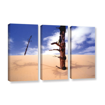 Brushstone Oregon Dunes Noon 3-pc. Gallery WrappedCanvas Wall Art