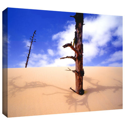 Brushstone Oregon Dunes Noon Gallery Wrapped Canvas Wall Art