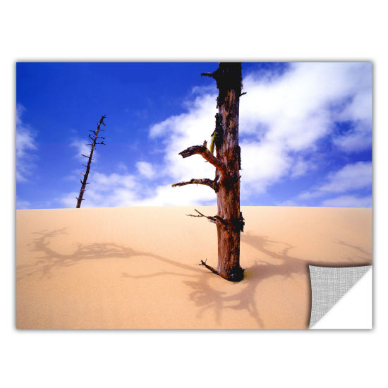 Brushstone Oregon Dunes Noon Removable Wall Decal