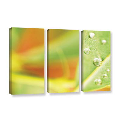 Brushstone Barn in Morning Dew 3-pc. Gallery Wrapped Canvas Wall Art