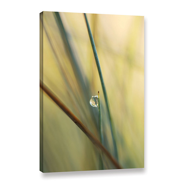 Brushstone Elijah Blue Gallery WrappedCanvas WallArt