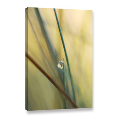 Brushstone Brushstone Elijah Blue Gallery WrappedCanvas Wall Art