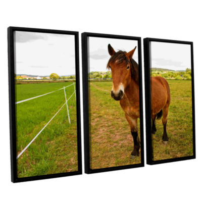 Brushstone Horse Painted II 3-pc. Floater Framed Canvas Wall Art