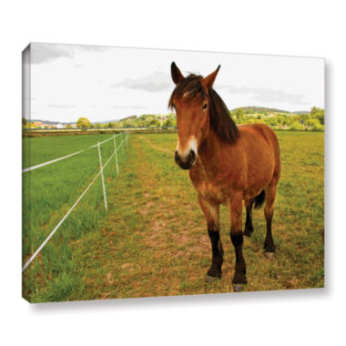 Brushstone Horse Painted II Gallery Wrapped CanvasWall Art