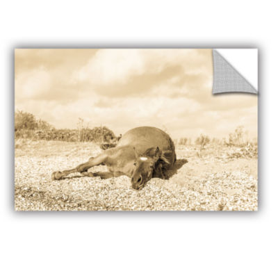 Brushstone Horse Laying Down Removable Wall Decal