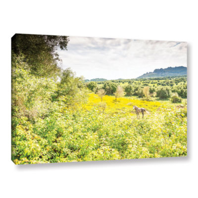 Brushstone Horse In Field 1 Gallery Wrapped CanvasWall Art