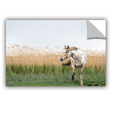 Brushstone Horse And High Grass Removable Wall Decal