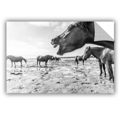 Brushstone Horses In Mud Removable Wall Decal