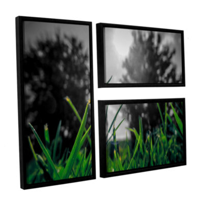 Brushstone Grass 3-pc. Flag Floater Framed CanvasWall Art