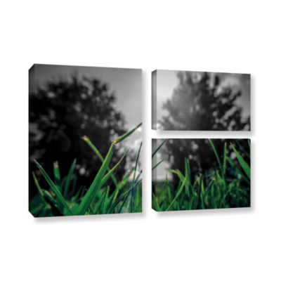 Brushstone Grass 3-pc. Flag Gallery Wrapped CanvasWall Art