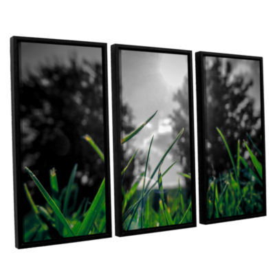 Brushstone Grass 3-pc. Floater Framed Canvas WallArt