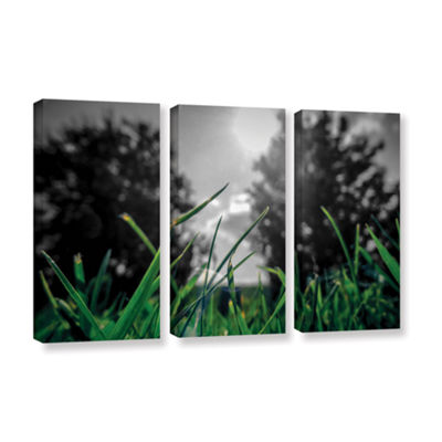Brushstone Grass 3-pc. Gallery Wrapped Canvas WallArt
