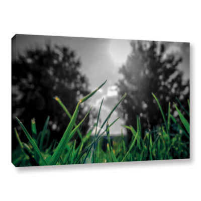 Brushstone Grass Gallery Wrapped Canvas Wall Art