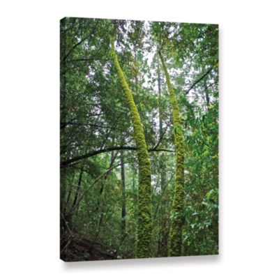 Brushstone Green Trees Gallery Wrapped Canvas WallArt