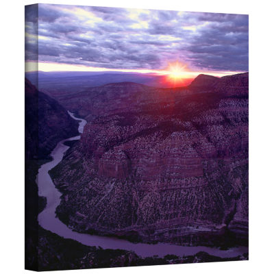 Brushstone Green River Dinosaur Gallery Wrapped Canvas Wall Art