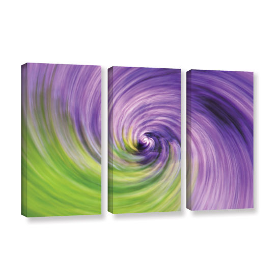 Brushstone Heather Spiral 3-pc. Gallery Wrapped Canvas Wall Art