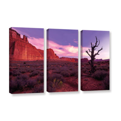 Brushstone High Desert Dawn (Vista) 3-pc. GalleryWrapped Canvas Wall Art
