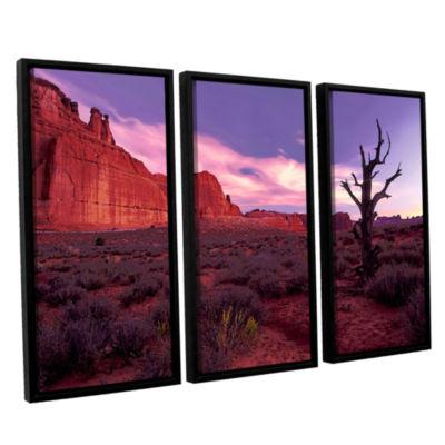 Brushstone High Desert Dawn (Barren Tree) 3-pc. Floater Framed Canvas Wall Art