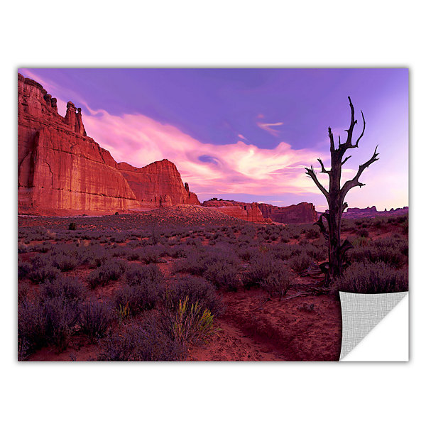 Brushstone High Desert Dawn (Vista) Removable WallDecal
