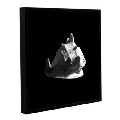 Brushstone Horned Helmet Seashell Cassis Cornuta Gallery Wrapped Floater-Framed Canvas Wall Art