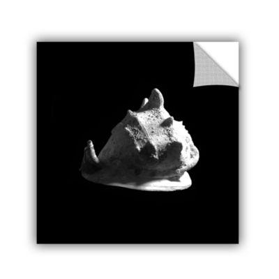 Brushstone Horned Helmet Seashell Cassis Cornuta Removable Wall Decal