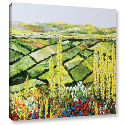 Brushstone Rolling Fields Gallery Wrapped Canvas Wall Art