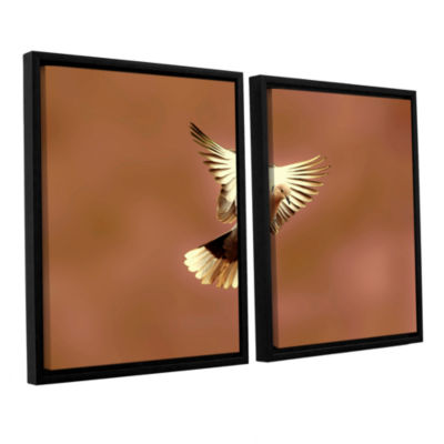 Brushstone Pinkdaove1 2-pc. Floater Framed CanvasWall Art