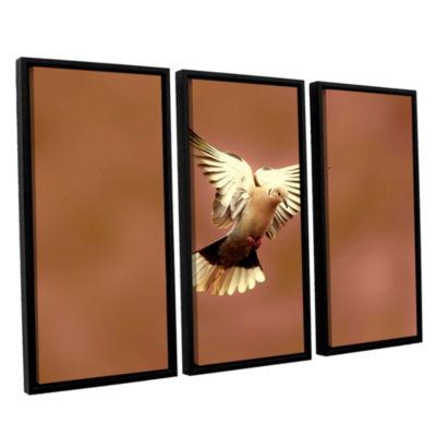Brushstone Pinkdaove1 3-pc. Floater Framed CanvasWall Art