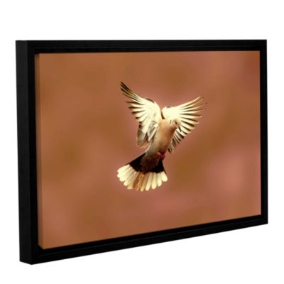 Brushstone Pinkdaove1 Gallery Wrapped Floater-Framed Canvas Wall Art