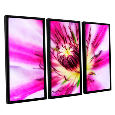 Brushstone Pink Petals 3-pc. Floater Framed CanvasWall Art