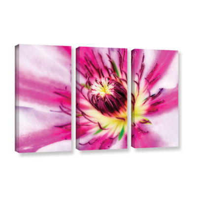 Brushstone Pink Petals 3-pc. Gallery Wrapped Canvas Wall Art