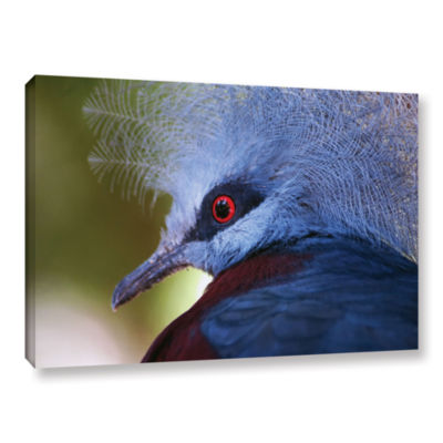 Brushstone Red Eye Gallery Wrapped Canvas Wall Art