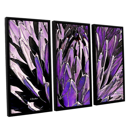 Brushstone Queen Victoria Agave 3-pc. Floater Framed Canvas Wall Art