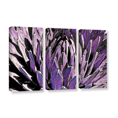 Brushstone Queen Victoria Agave 3-pc. Gallery Wrapped Canvas Wall Art