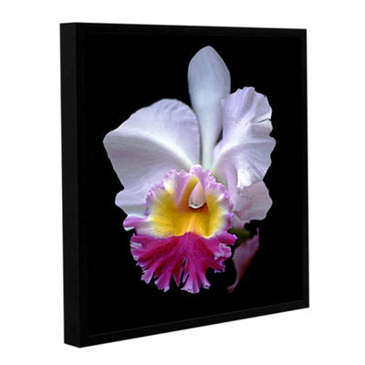 Brushstone Portrait Of An Orchid Gallery Wrapped Floater-Framed Canvas Wall Art
