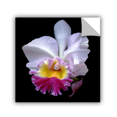 Brushstone Portrait Of An Orchid Removable Wall Decal