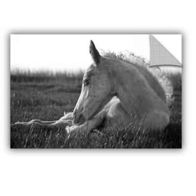 Brushstone Relaxing Horse Removable Wall Decal