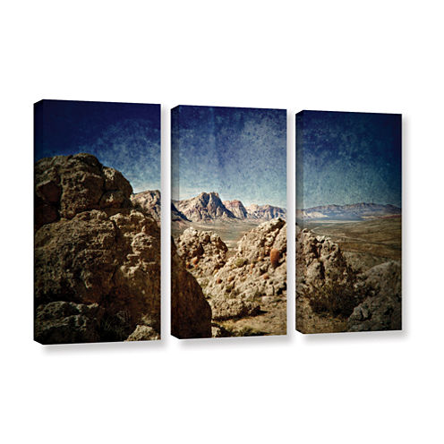 Brushstone Powder 3-pc. Gallery Wrapped Canvas Wall Art