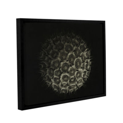 Brushstone Pollen Gallery Wrapped Floater-Framed Canvas Wall Art
