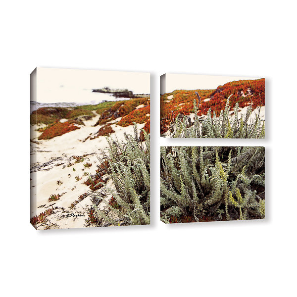 Brushstone Red Ice On Beach III 3-pc. Flag Gallery Wrapped Canvas Wall Art