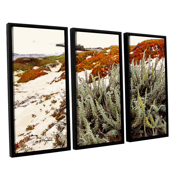 Brushstone Red Ice On Beach III 3-pc. Floater Framed Canvas Wall Art